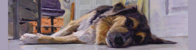 studiodog_sandra-corpora