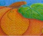Pumpkins_Gingrich_Carol_68744254_pumpkin8